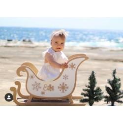Custom sleigh