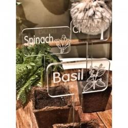 clear blank plant picks - bulk